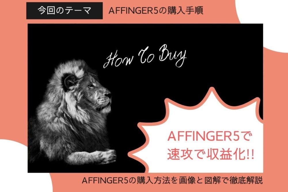 【歴1年体験レビュー】AFFINGER5の購入手順&ダウンロードインストール方法を徹底解説